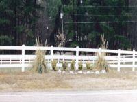 24_vinyl_pasture_fence
