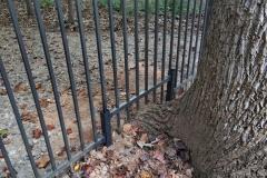 bronze-aluminum-fencing22